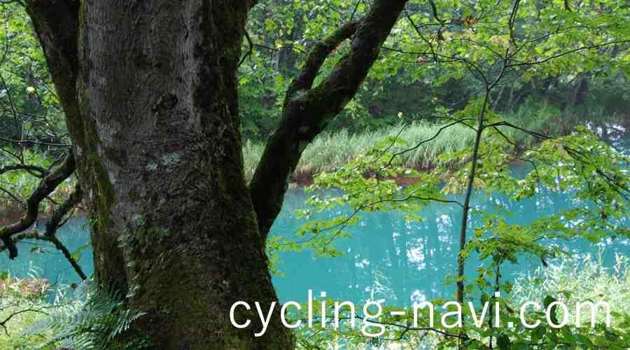 裏 磐梯 サイクリング コース
